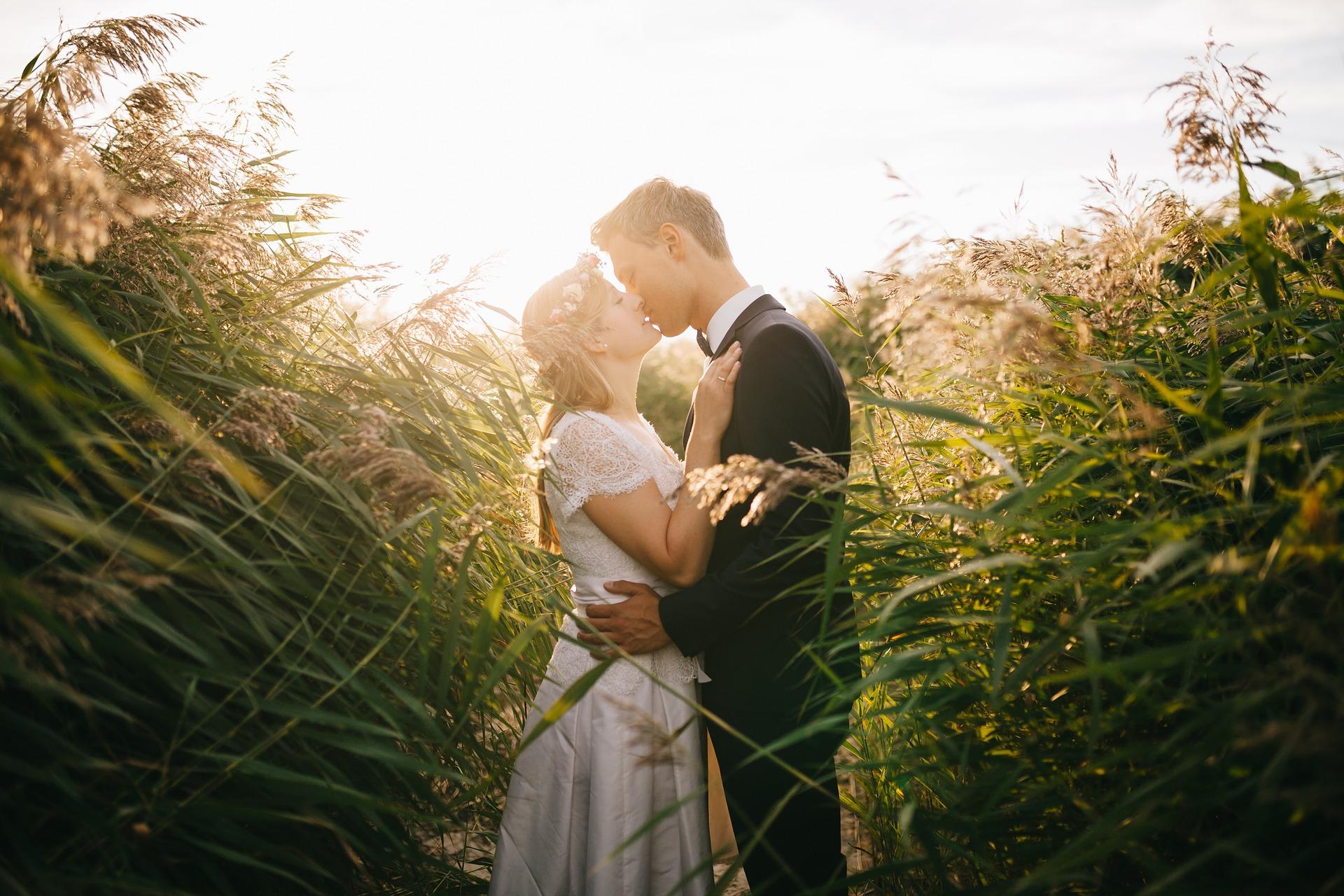 Přírodní svatba louka